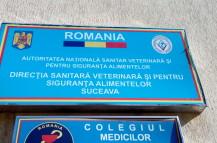 DSV Suceava
