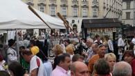 Bucovina saluta Viena, 16 iunie 2018 (16)