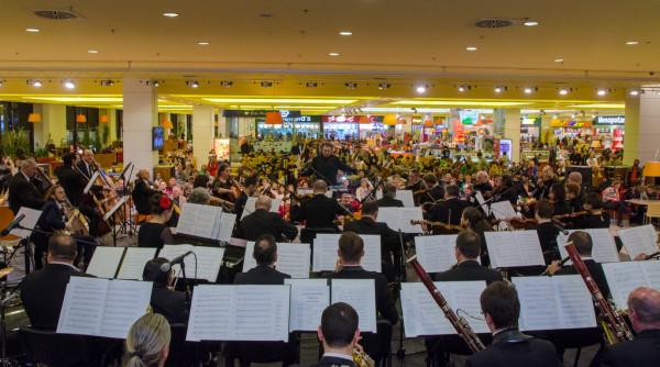 Iulius Mall Suceava (14)