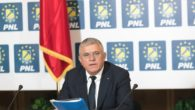 Dumitru Mihalescul, Obiectiv, Suceava, PNL, deputat