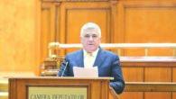 Dumitru Mihalescul, deputat Obiectiv