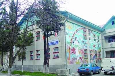 DGASPC, Suceava, Obiectiv,