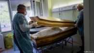 Morti decese COVID Suceava