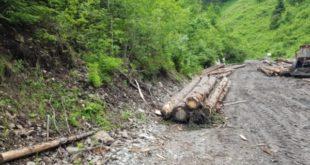 Lemn confiscar, Garda Forestiera, Obiectiv, Suceava