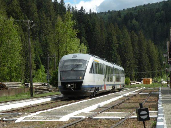 Tren, Putna, Suceava, Obiectiv