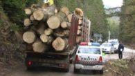 lemn, politie, Obiectiv, perchezitii